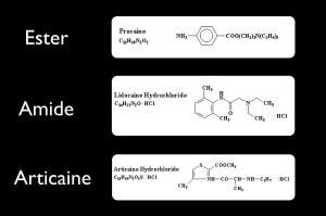 FIGURE 1. Chemical formulas of procaine (ester), lidocaine (amide) and articaine.