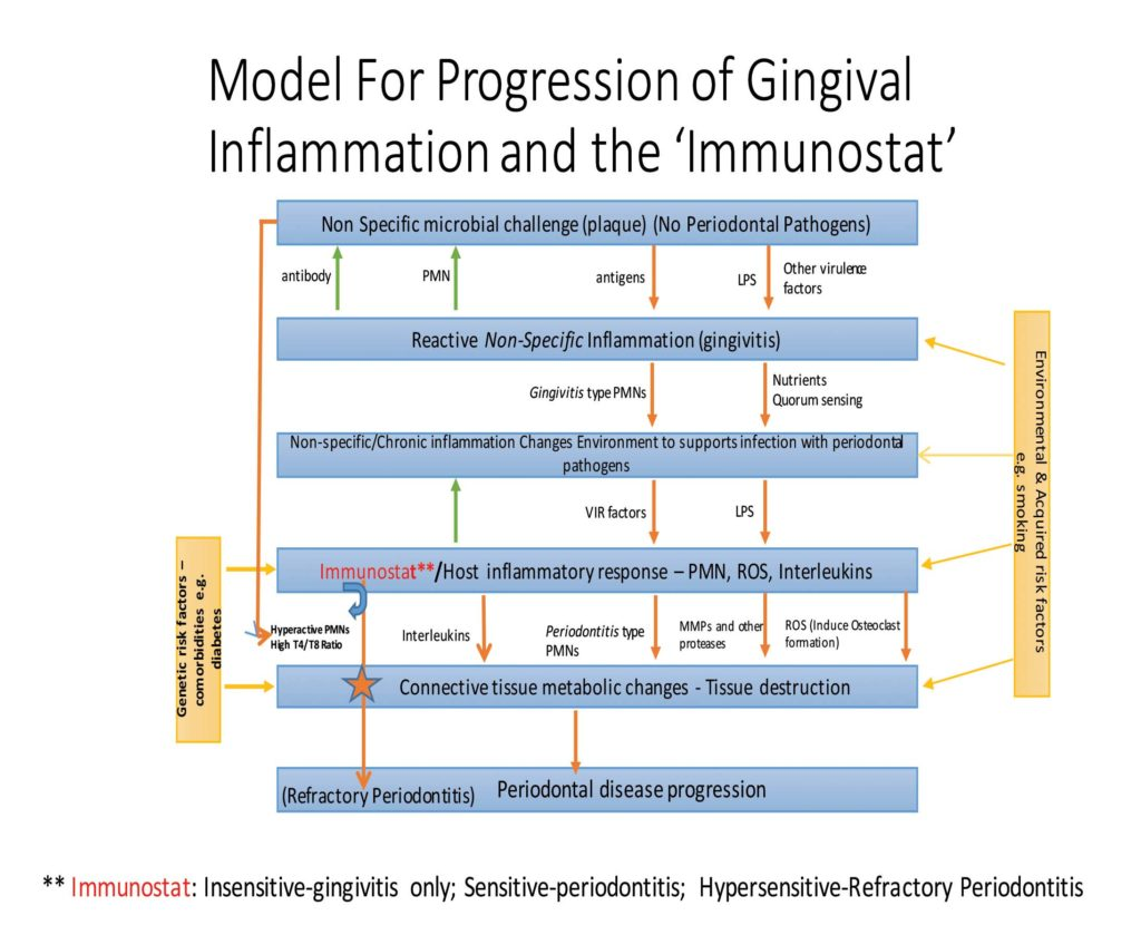 FIGURE 1. This flowchart demonstrates how inflammation and microbial infection interact with one another. It also explains how periodontitis might develop from gingivitis as a consequence of changes in the local inflammatory milieu and subsequent population with periodontal pathogenic bacteria. The latter upregulate further, the immune response. In patients with a sensitive immunostat, which plays the most important role in the box indicating 'host inflammatory response'.