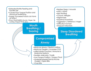 The cause and effect of Sleep Disordered Breathing.