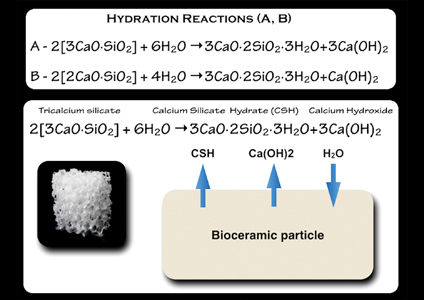 Chemistry associated with the hydration reaction of bioceramic material (calcium silicates) with water (moisture present in canal and tubuli) creates calcium silicate hydrate and calcium hydroxide.