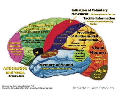 Examples of older brain function models based on theory of independent modules.