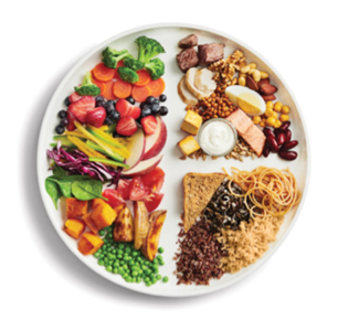 The Eat Well Plate is the visual associated with the updated Canada Food Guide.