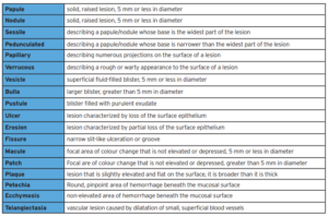 Definitions of clinical descriptors used to describe oral lesions.