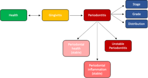 Illustration of the continuum between health and gingivitis and the irreversible distinction between gingivitis and periodontitis. Health may exist on a pristine, intact, or reduced periodontium in either a stable periodontitis patient or a non-periodontitis patient. Gingivitis may exist on an intact, or reduced periodontium in a non-periodontitis patient. For periodontitis patients who are experiencing active periodontal inflammation, the accepted terminology to describe this state are gingival inflammation and/or gingivitis. The distinction between these terms is to signify that the progression from gingivitis to periodontitis is irreversible and associated with more complex treatment outcomes and prognoses.