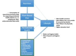 Connections between Nutrition, Plant-Based Diet, Lifestyle Factors and Oral Health